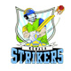 Kerala Strikers Team Logo