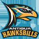 Antigua Hawksbills Team Logo