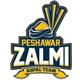 Peshawar Zalmi Team Logo