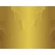Punjab De Sher Team Logo