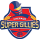 Chepauk Super Gillies Team Logo