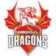 Dindigul Dragons Team Logo